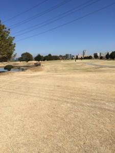 牧野パークゴルフ場IN14